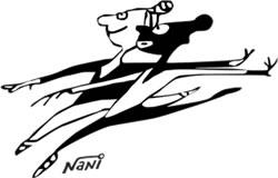 logo_nani